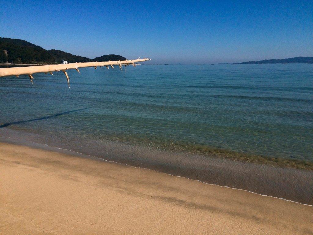 ヤシの木ブランコ近辺の海