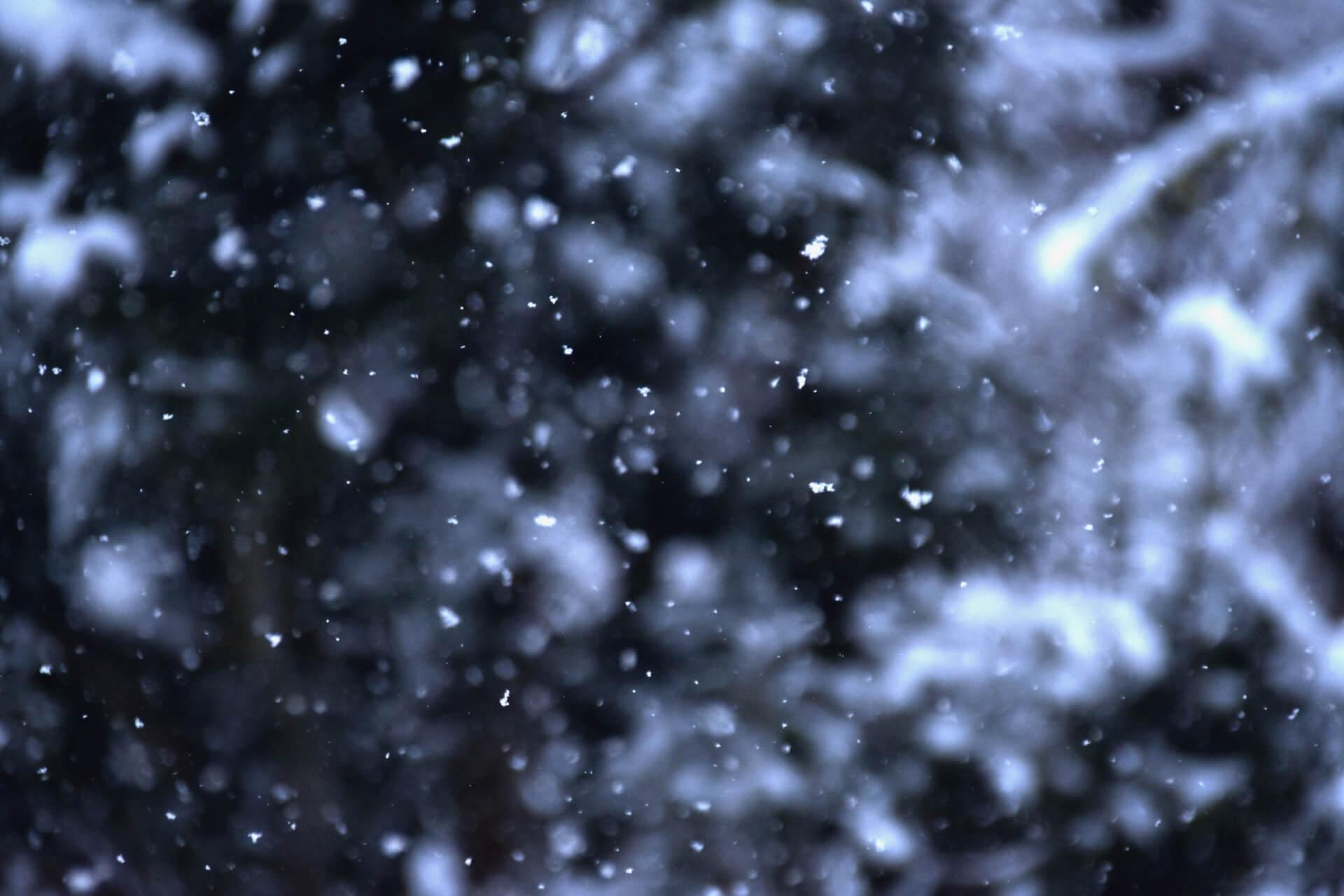 東京今シーズン初雪 2019