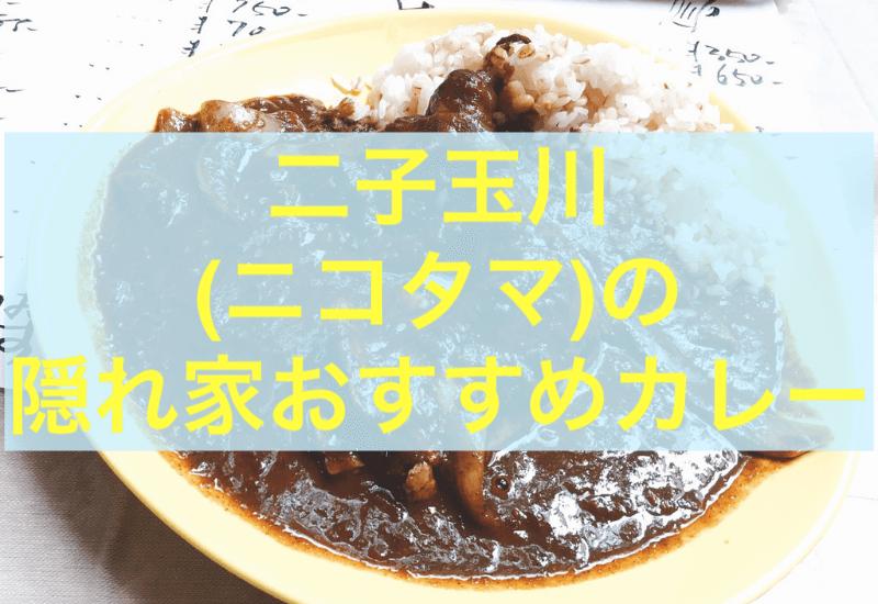 二子玉川・東京 おすすめカレー アッチャカーナ